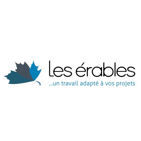 Logo de l'ETA Les Erables