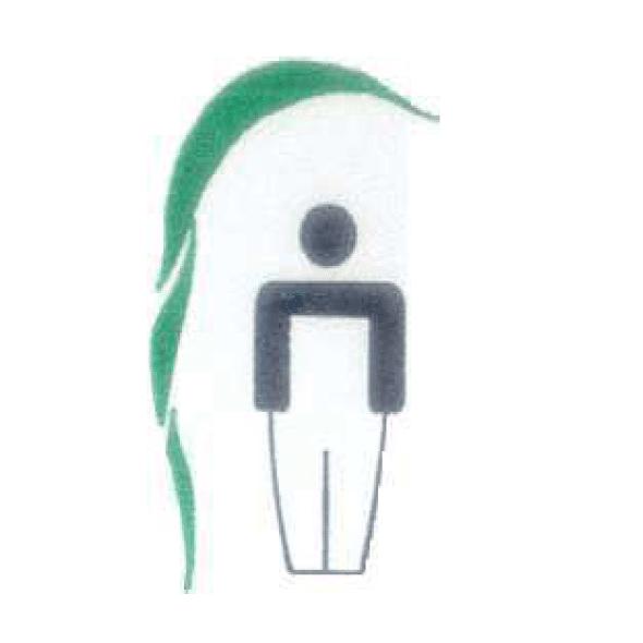 Logo de l'ETA Le Roseau Vert